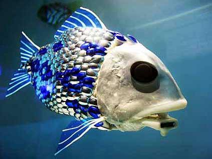 Dünyanın İlk Robot Balığı