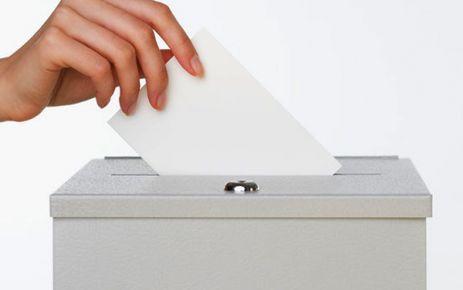 oy vermek